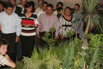 Genera producción de flores un valor de 625 mdp al año