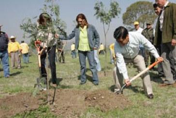 Reconoce Federación a Puebla por reforestación