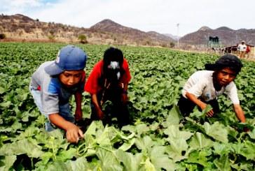 Colocan a más de 16 mil poblanos en eventos de apoyo al empleo