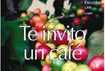 PIPOPES – Café