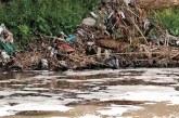 Proponen endurecer castigo contra agresores del medio ambiente