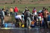 Afectadas por fugas de hidrocarburo, 5 mil hectáreas de cultivo: Sagarpa