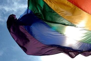 Gobierno no tiene interés en atender temas de la comunidad gay: Odesyr