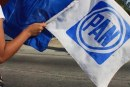Aspirantes a dirigir el PAN deben juntar 2,400 firmas